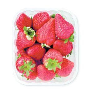 AARDBEIEN joycegroenteenfruit